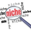Own your niche online